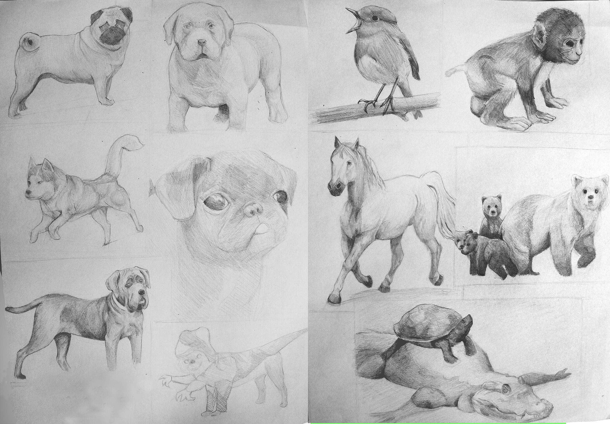 ilustracion14